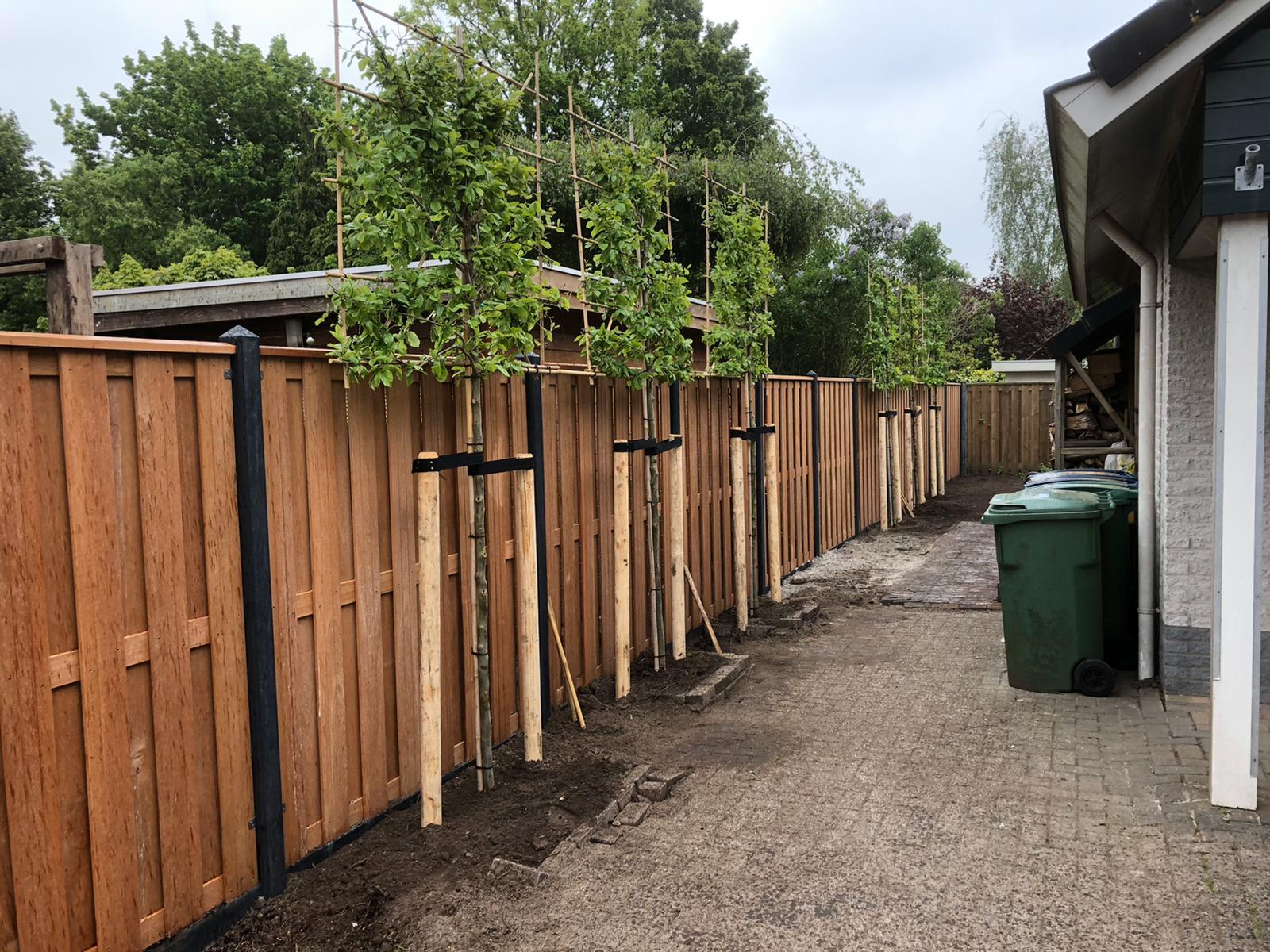 Nieuwe tuin door Mitch Tuinen 2