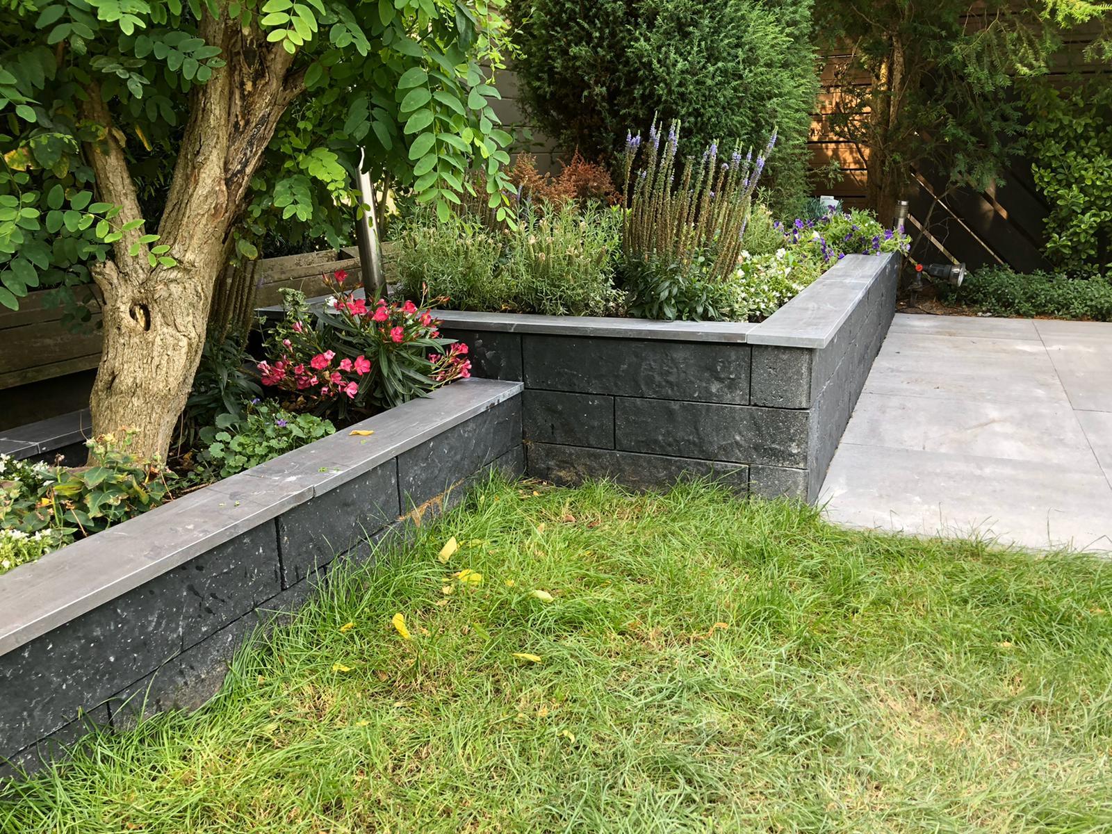 Nieuwe tuin door Mitch Tuinen 4